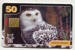 TK 29899 ESTONIA Chip Zoo - Snowy Owl - Estonia