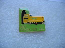 Pin's Des Mines De Sel De La Commune Suisse BEX (canton De Vaud) - Badges