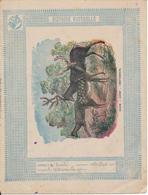 Couverture De Cahier - Histoire Naturelle - Daim, Cerf, Chevreuil - Schuehmacher - Protège-cahiers