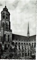 Lier   St Gummarus Kerk - Malines