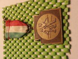 Medaille  / Medal - Ulfse Avondvierdaagse 1981 /  Evening Four Days 1981 - The Netherlands - Medaglie