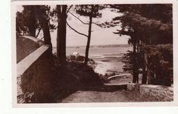 Cp , 22 , PAIMPOL , Environs , Paysage à La Pointe De L'Arcouest - Paimpol