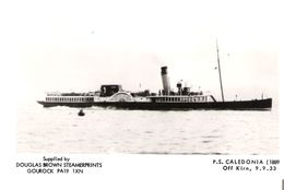 P.S. CALEDONIA - Paddlestreamer Built 1899 / Pictured 1933 - Modern Card - Dampfer