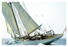 ZACA - Fischerei-Schoner (1928) / Modern Card /ex Privatyacht V.Errol Flynn) - Segelboote