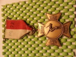 Medaille  / Medal -zwemmen 1977 / Swimming - The Netherlands - Medaglie