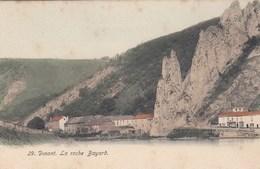 DINANT / LA ROCHE BAYARD ET LES MAISONS AUTOUR - Dinant