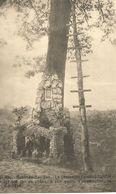 Rabosée-Barchon  -  Le Lieutenant Edmond SIMON Fut Tué Sur Ce Chêne, à Son Poste D'observation, Le 6-8-14.  (scan Verso) - Blegny
