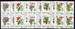 Russia 1993 Block Indoor Plants Flowers Flower Chinese Hibiscus Persian Plant Nature Stamps MNH Mi 296-300 Sc 6133-37 - Plants