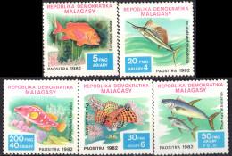 MADAGASCAR - Poissons - Madagascar (1960-...)