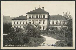 Ansichtskarte   Österreich -Bruck - Forstschule - Ohne Zuordnung