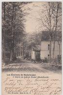 CP - Belgique - 1903 - Les Environs De Nederbrakel - L'Entrée Du Bois De Brakel - TX6 De 20c. . - Brakel