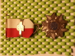 Medaille  / Medal - Avondvierdaagse  / Celebrate Four-day Walk ( 2 ) - The Netherlands - Medaglie