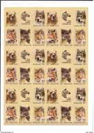 Russia, SU, Soviet Union Zoo 1988, Animals , Imperforated SHEET !!!! - 1923-1991 USSR
