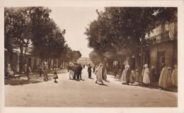 Photo Carte Saint-arnaud Rue Principale - Other Cities