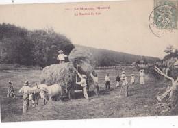 Le Morvan Illustré La Rentrée Du Foin Circulée En 1907 - France