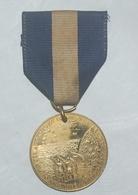 Medaille Américaine Guerre De Sécession , Fort SUMTER ,1986 . US MEDAL - Stati Uniti