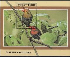 Benin 1999 Sc. 1126 Oiseaux Exotiques Mandingao Nitidula CTO Perf.  Amaranto Dorso Verde - Passeri