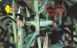Oman,  41OMNK, Rose Ringed Parakeet, 2 Scans. - Oman