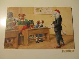 DRESSED DOGS AT SCHOOL   , THIELE ?? , HUNGARY ,  OLD POSTCARD , 0 - 1900-1949