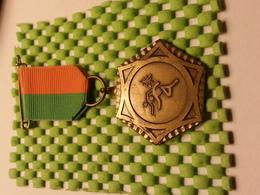 Medaille  / Medal - Estafette / Hard Lopen / Relay Race, Running Fast - The Netherlands - Medaglie