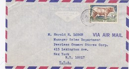 ESC De Saint-Pierre Et Miquelon (975) Pour New York (USA) - CAD 23 Mai 1965 - Timbre YT 375 - St.Pierre Et Miquelon