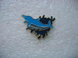 Pin's Dauphin Dans L'eau, Schotzt Die Natur - Animals