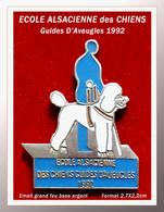 SUPER PIN'S CHIEN-ASSOCIATIONS : Ecole Alsacienne Des CHIENS GUIDES D'AVEUGLES 1992, émail Grand Feu Argent, 2,7X2,2cm - Animals