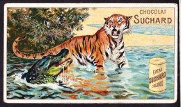 CHROMO Chocolat SUCHARD Animaux  Tigre   Animals  Tiger  Crocodile Serie 142 - Suchard