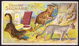 CHROMO Chocolat SUCHARD   Chats   L'ile De Man Tigré  Modj Kitty   Serie 147   Cats - Suchard