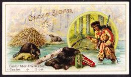 CHROMO Chocolat SUCHARD Animaux à Fourrure Castor Bièvre Beaver  Chasse Hunting Indien Indian     Serie 151 - Suchard