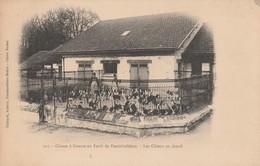 77 - FONTAINEBLEAU - Chasse à Courre En Forêt De Fontainebleau - Les Chiens Au Chenil - Fontainebleau