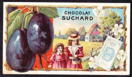 CHROMO Chocolat SUCHARD Fruits  Prunes   Serie 152a - Suchard