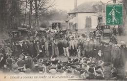 77 - FONTAINEBLEAU - Chasse à Courre En Forêt De Fontainebleau - Les Honneurs Du Pied - Fontainebleau