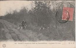 77 - FONTAINEBLEAU - Chasse à Courre En Forêt De Fontainebleau - La Mise à La Voie - Fontainebleau
