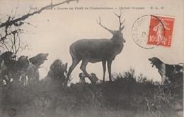 77 - FONTAINEBLEAU - Chasse à Courre En Forêt De Fontainebleau - Hallali Courant - Fontainebleau