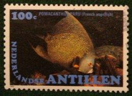 100 Ct POISSONS TROPICAUX FISH VIS NVPH 726 1982 Gestempeld / USED NEDERLANDSE ANTILLEN NETHERLANDS ANTILLES - Curaçao, Nederlandse Antillen, Aruba