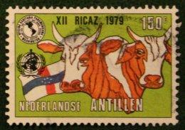 PAHO ANIMALS DIEREN ANIMAUX Cow NVPH 620 1979 Gestempeld / Used NEDERLANDSE ANTILLEN NETHERLANDS ANTILLES - Curaçao, Nederlandse Antillen, Aruba