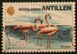250 Ct Definitieve Serie Birds Vogel Church NVPH 1276 1999 Gestempeld / Used NEDERLANDSE ANTILLEN NETHERLANDS ANTILLES - Curaçao, Nederlandse Antillen, Aruba