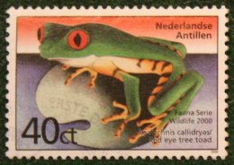 Fauna Animals Frog NVPH 1308 2000 Gestempeld USED NEDERLANDSE ANTILLEN / NETHERLANDS ANTILLES - Curaçao, Nederlandse Antillen, Aruba