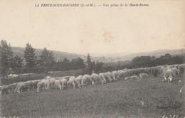 77 - LA FERTE SOUS JOUARRE - Vue Prise De La Haute Borne - La Ferte Sous Jouarre