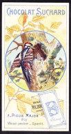 CHROMO Chocolat SUCHARD  Oiseaux Nid Bird Nest Pic Woodpecker   Serie 158 - Suchard