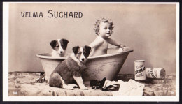CHROMO RARE  Chocolat SUCHARD   Enfant Et Chiens Dogs  Serie 160 - Suchard