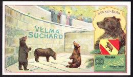 CHROMO Chocolat SUCHARD   Animaux   Ours  Berne Bern Bears  Zoo   Serie 161 - Suchard