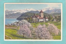 Small Antique Postcard Of Spiez,Schloss,Thunersee, Berne, Switzerland,V1. - BE Berne