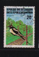 Cameroun 1982, Bird, Minr 987, Vfu. Cv 1,60 Euro - Cameroon (1960-...)