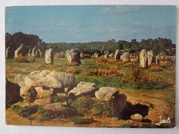 1004-Cartolina Francia Bretagne Carnac Le Dolmen - Bretagne