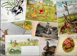 Lot 1105 De 10 CPA Lapin Bunny Rabbit Dont Gaufrées Illustrateurs Déstockage Pour Revendeurs Ou Collectionneurs - Cartes Postales