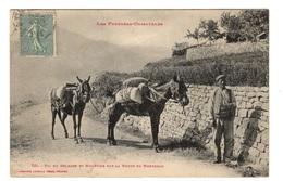 66 PYRENEES ORIENTALES - Pic Du Belmate Et Muletier Sur La Route De Montbold - Unclassified