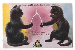 CHATS - Pour Vous Souhaiter Bonne Chance, Here's Wishing You The Best Of Luck   - L 1 - Chats