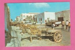 DJIBOUTI - RUE DE DJIBOUTI - Djibouti
